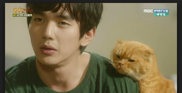 Imaginary Cat Yoo Seung Ho
